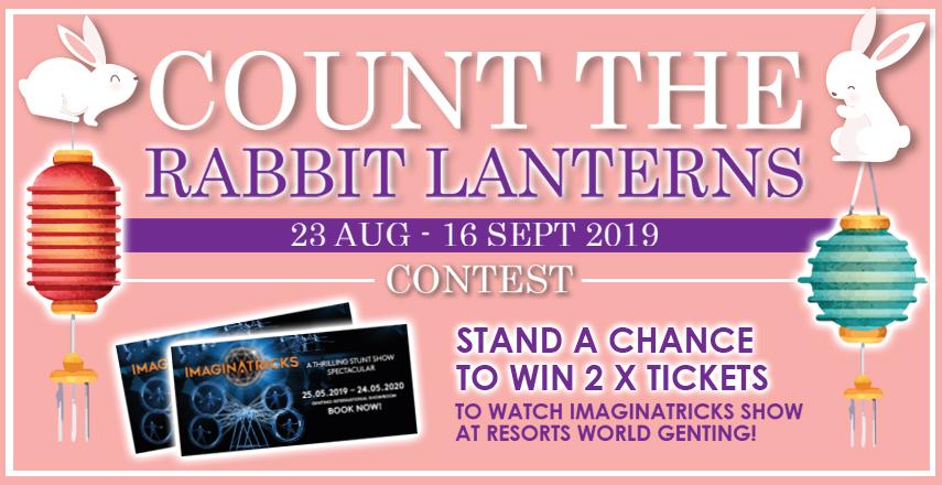 Count The Rabbit Lanterns Contest